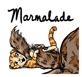 the unadoptables cat comic marmalade