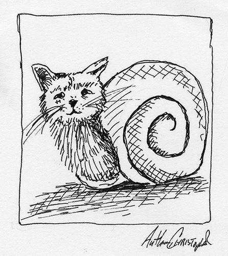 snail cat 4