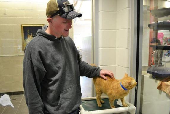 saddest shelter cat gets adopted 4