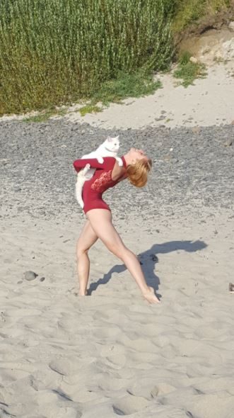 white cat goes to beach and dances with a stranger