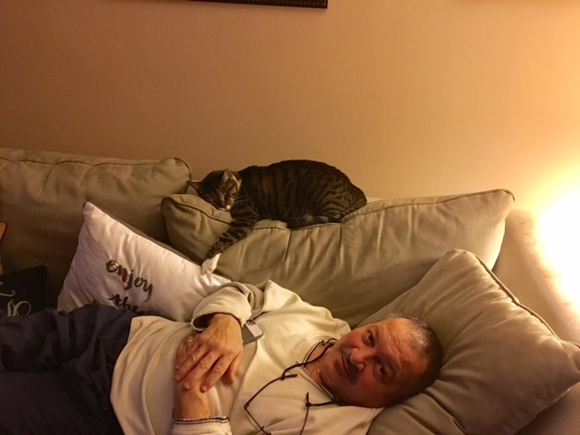 my dad hated cats until one day i came home to this 12
