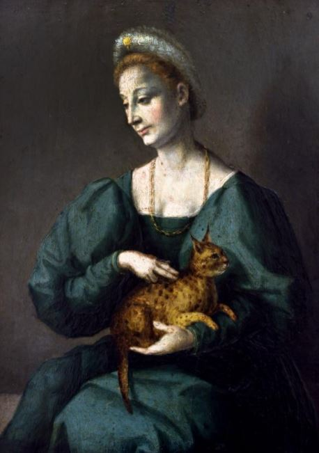 cats domesticated themselves painting middle ages
