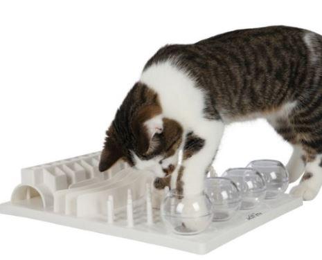 cat food puzzle 1a