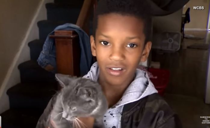 10 year old boy climbs tree to save cat 2