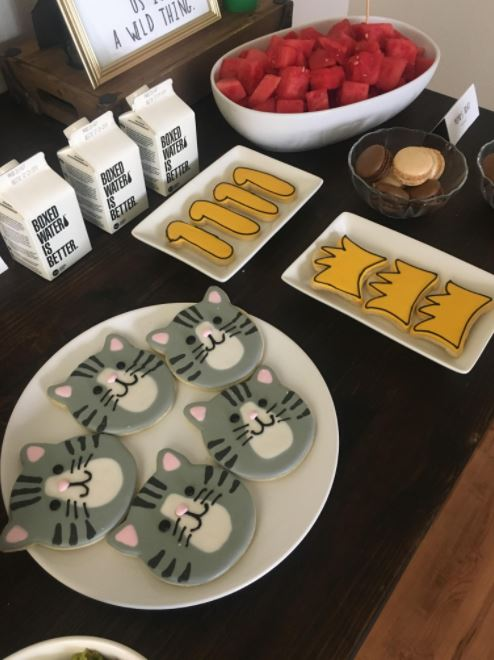 woman throws birthday party for her cat 4