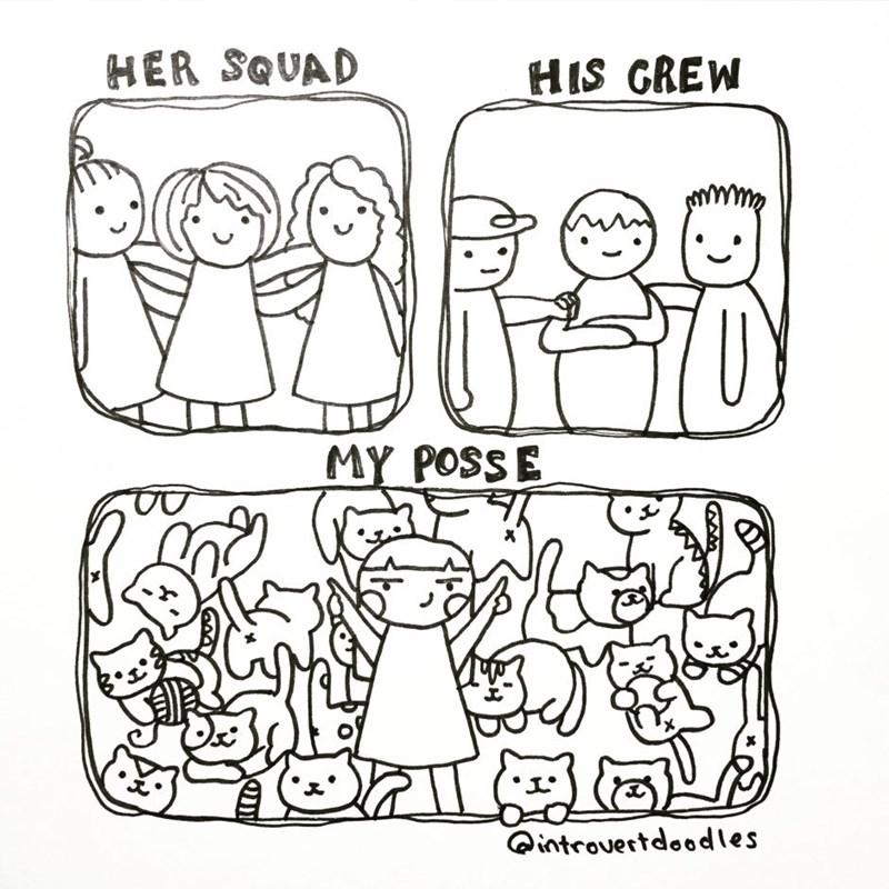 introvert cat lady comics 8