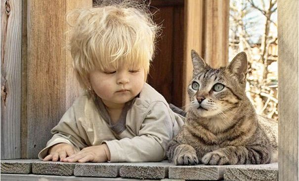 cats and kids 20