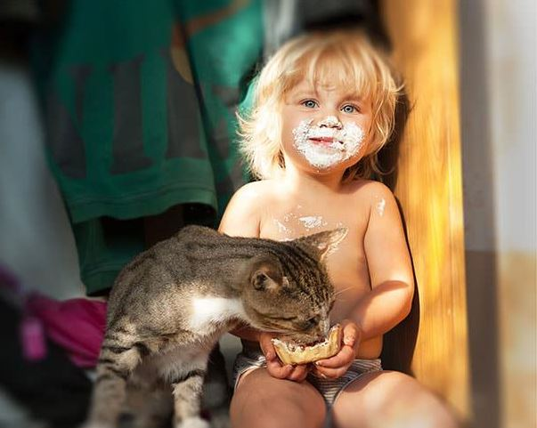 cats and kids 8