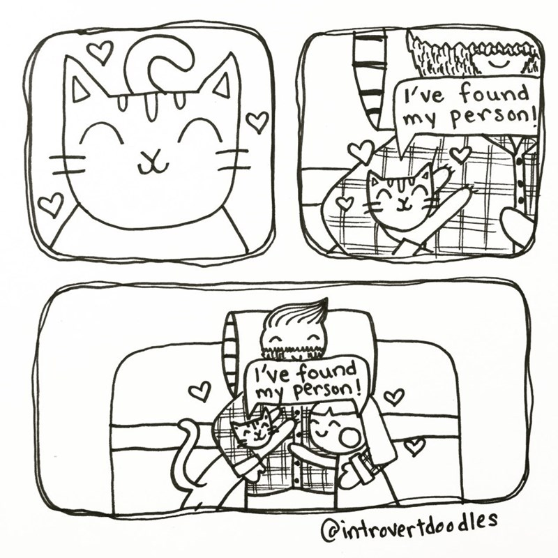 introverted cat lady comics 14