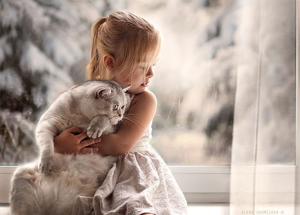 cats and kids 6