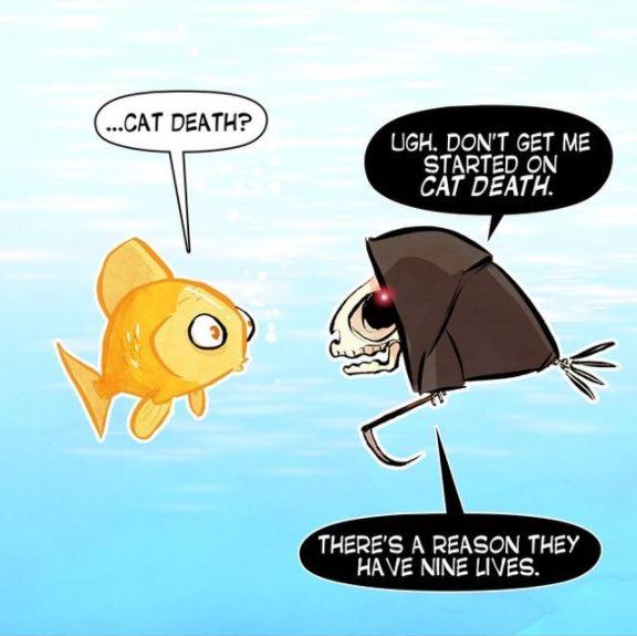 grim reaper cat 3