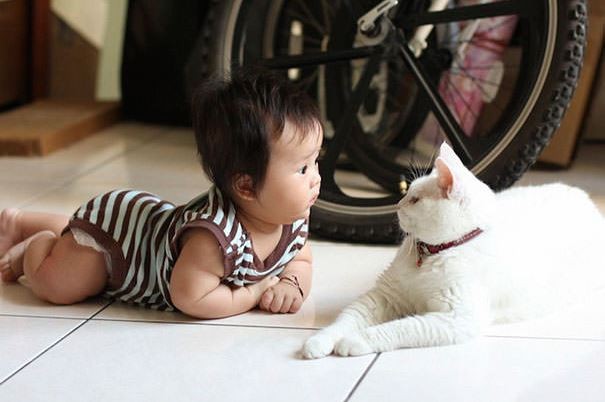 cats and kids 10