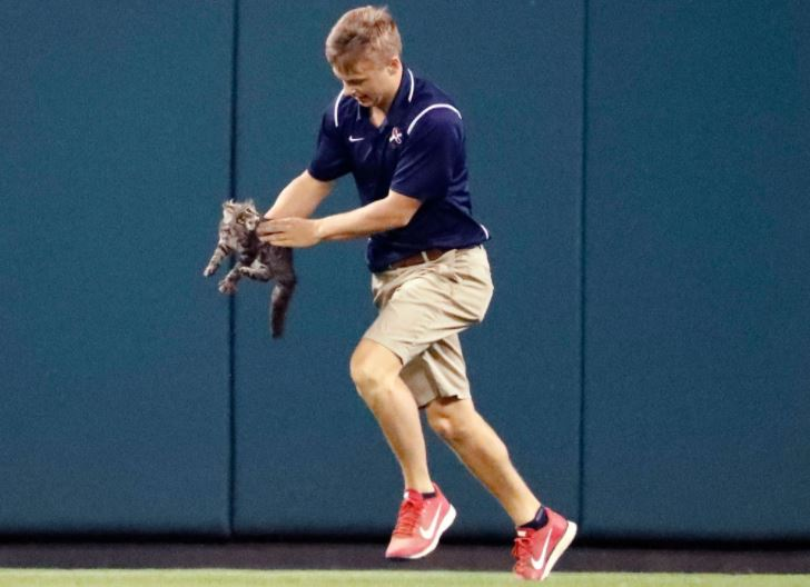 grounds crew picks up rally baseball cat