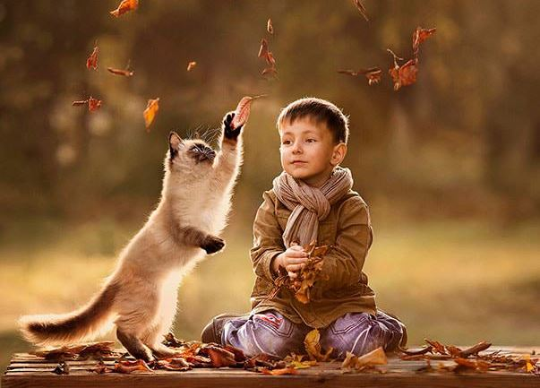 cats and kids 1