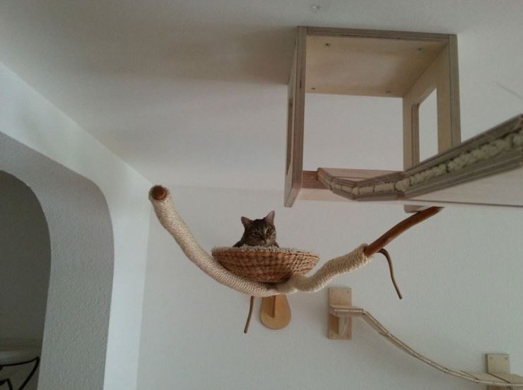 epic cat jungle gym 5