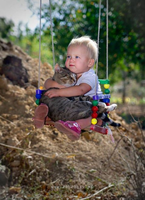 cats and kids 7