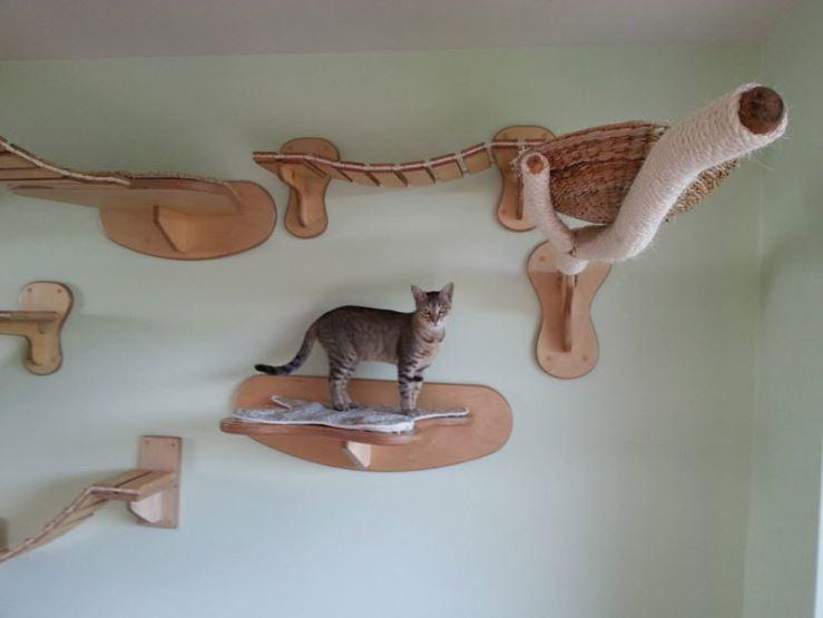 epic cat jungle gym 9