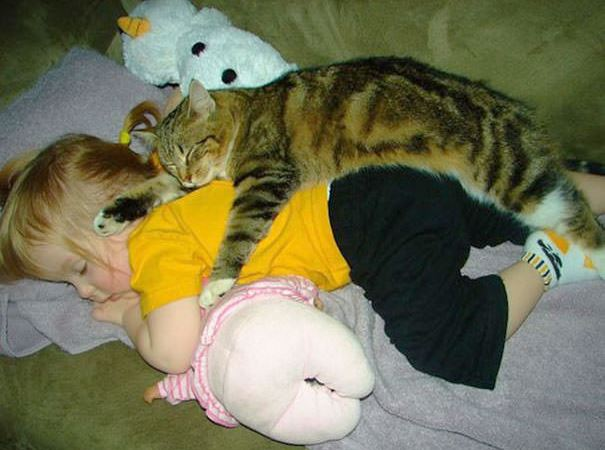 cats and kids 15