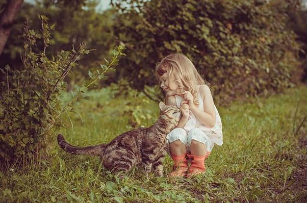 cats and kids 26
