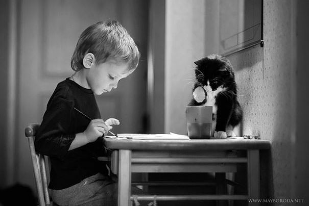cats and kids 13
