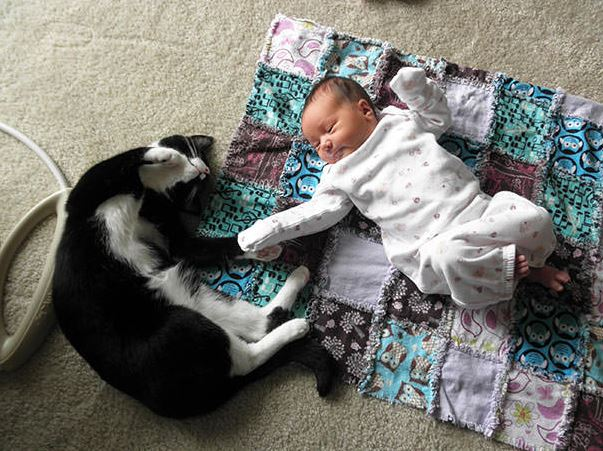 cats and kids 21