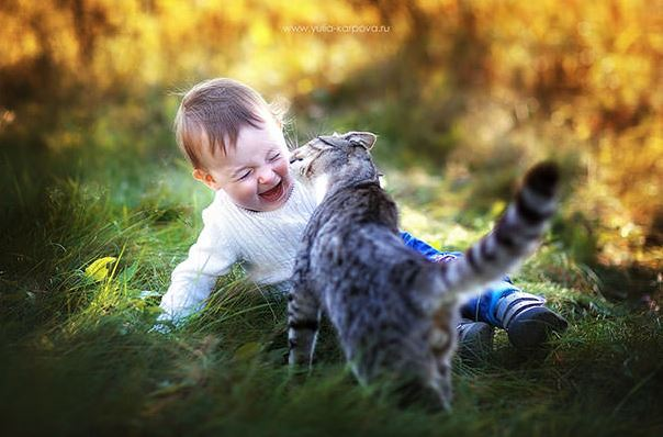cats and kids 4