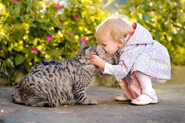 cats and kids 22