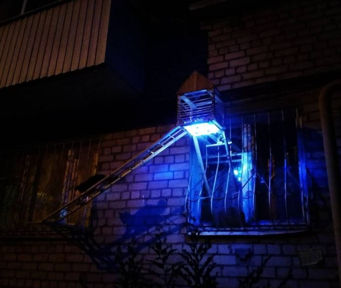 man builds glowing bridge for his cat 6