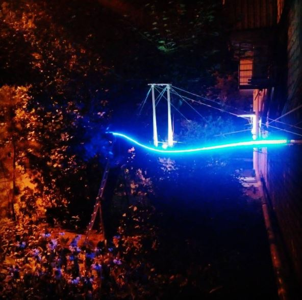 man builds a glowing bridge for his cat 2