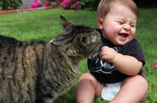 cats and kids 18