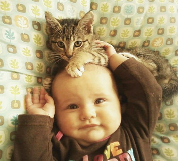 cats and kids 19
