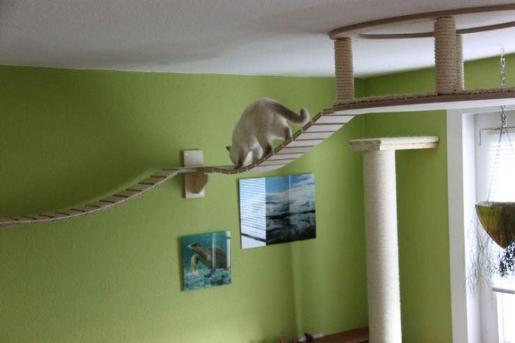 epic cat jungle gym 4