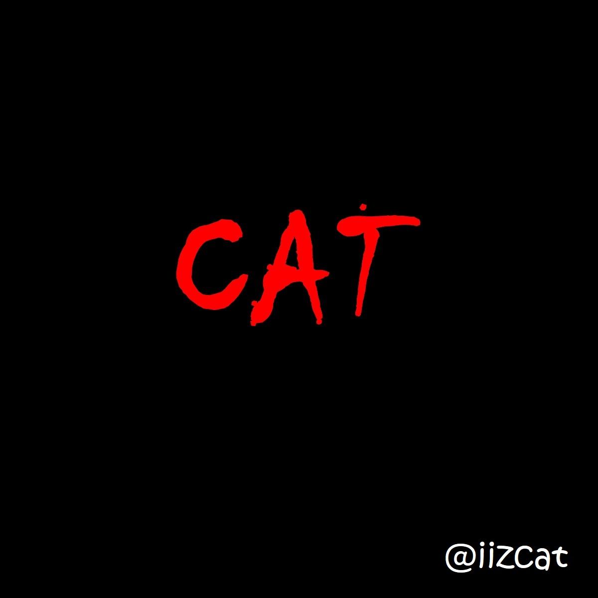 iizcat IT scene 15