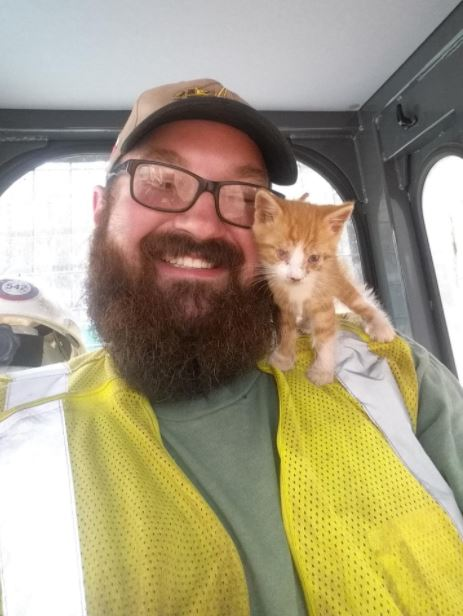 kitten rescued from pipeline construction 1