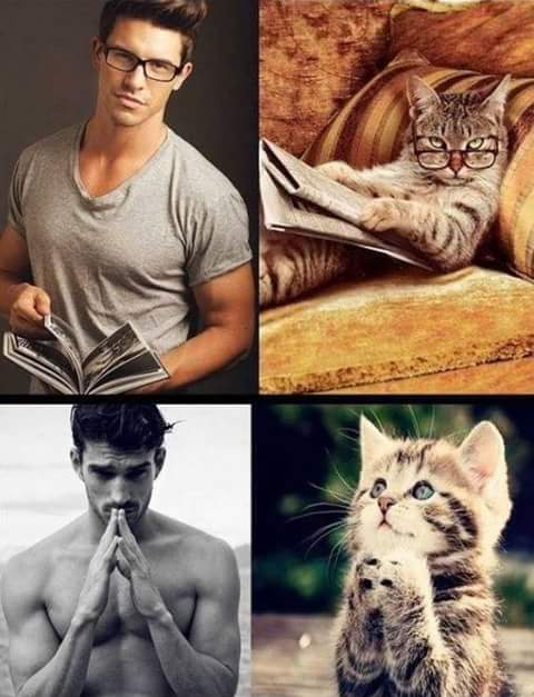 men and cats 6