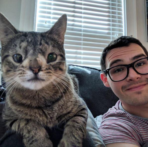 maya the cat 4