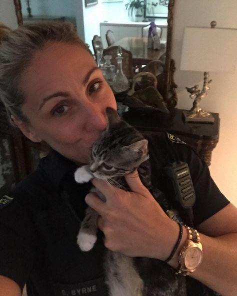 cop fosters kittens 1