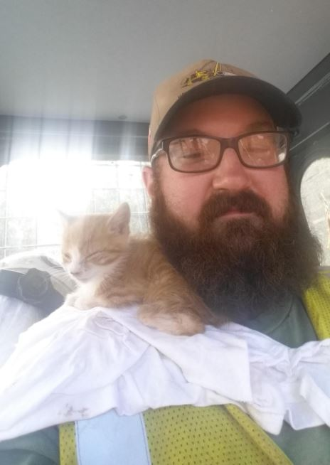 kitten rescued from pipeline construction 5