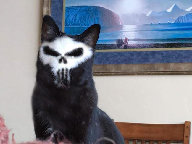 punisher cat ps battle 5
