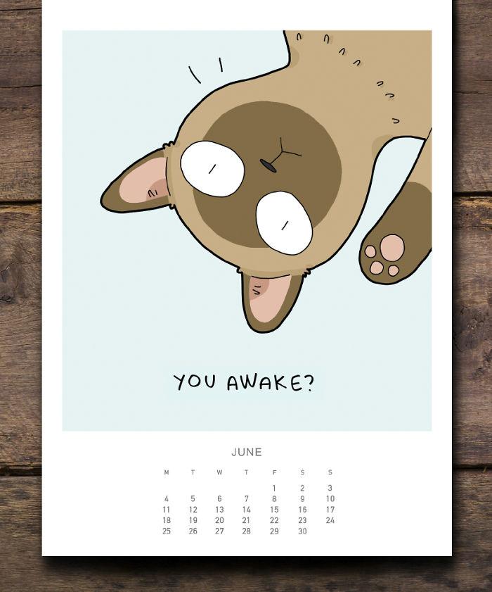 cat calendar june