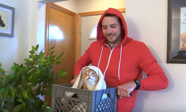 cat ET costume