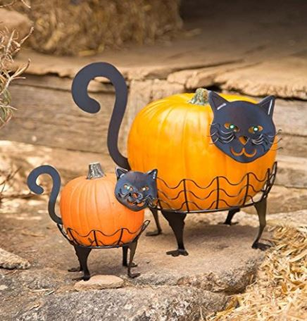 cat halloween stuff 1