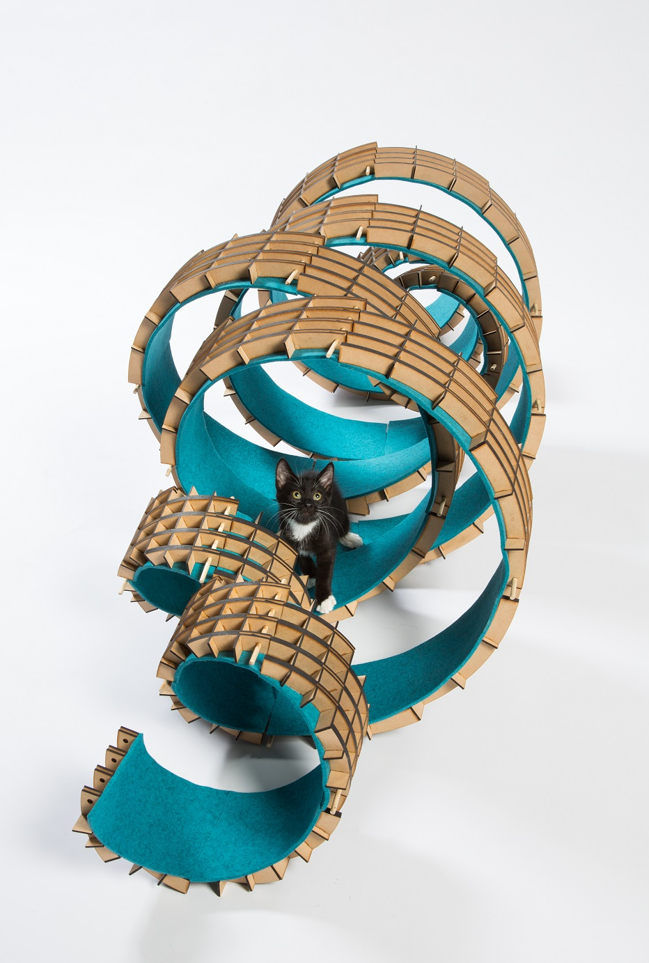 architect cat shelter 11
