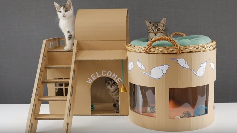 How to make an adorable kitten play house with cardboard