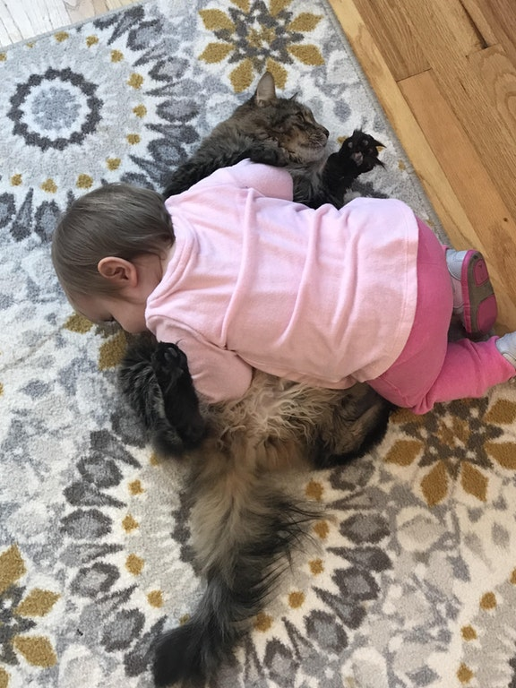 little girl uses cat as pillow 1
