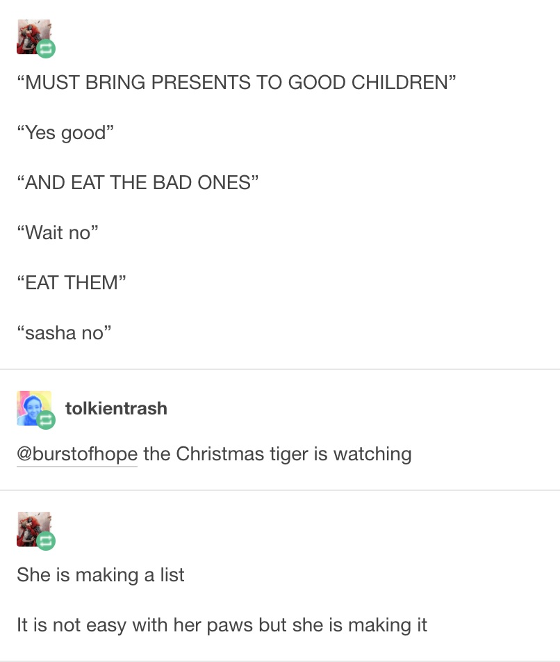 sasha the christmas tiger 2