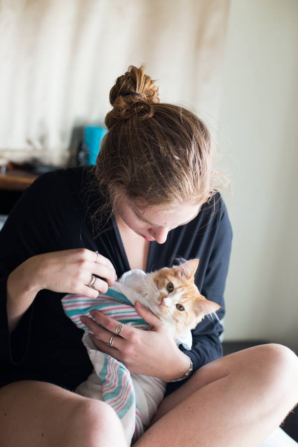 couple announces new baby on facebook with kitten photos 4
