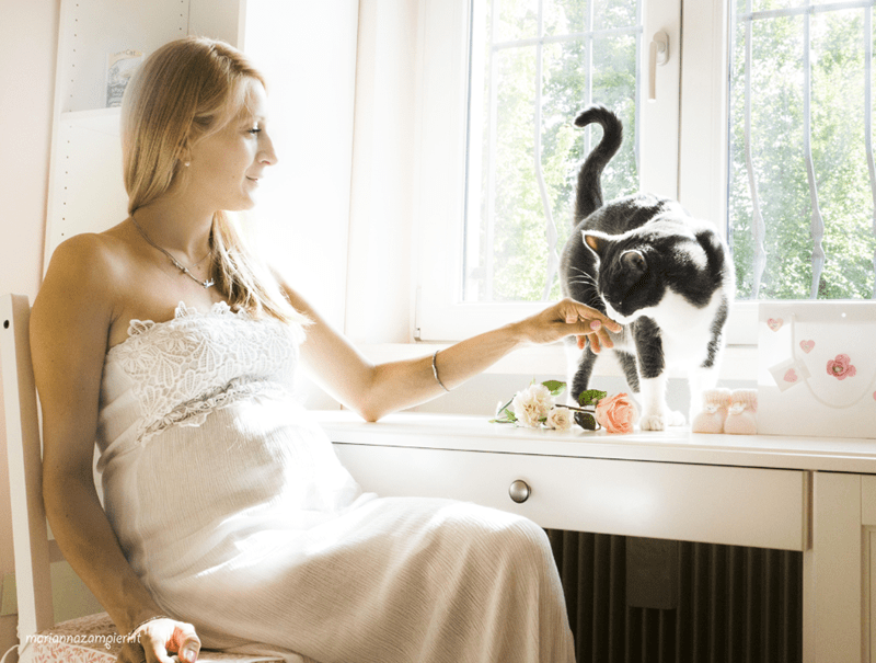 wedding photos with cats 6