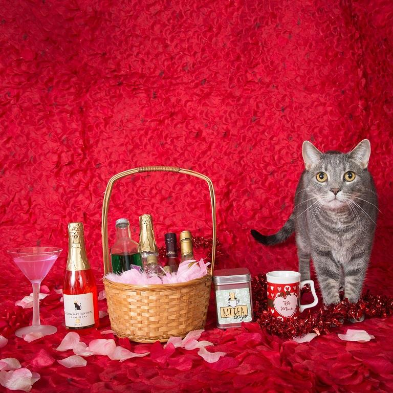 cat wine 2