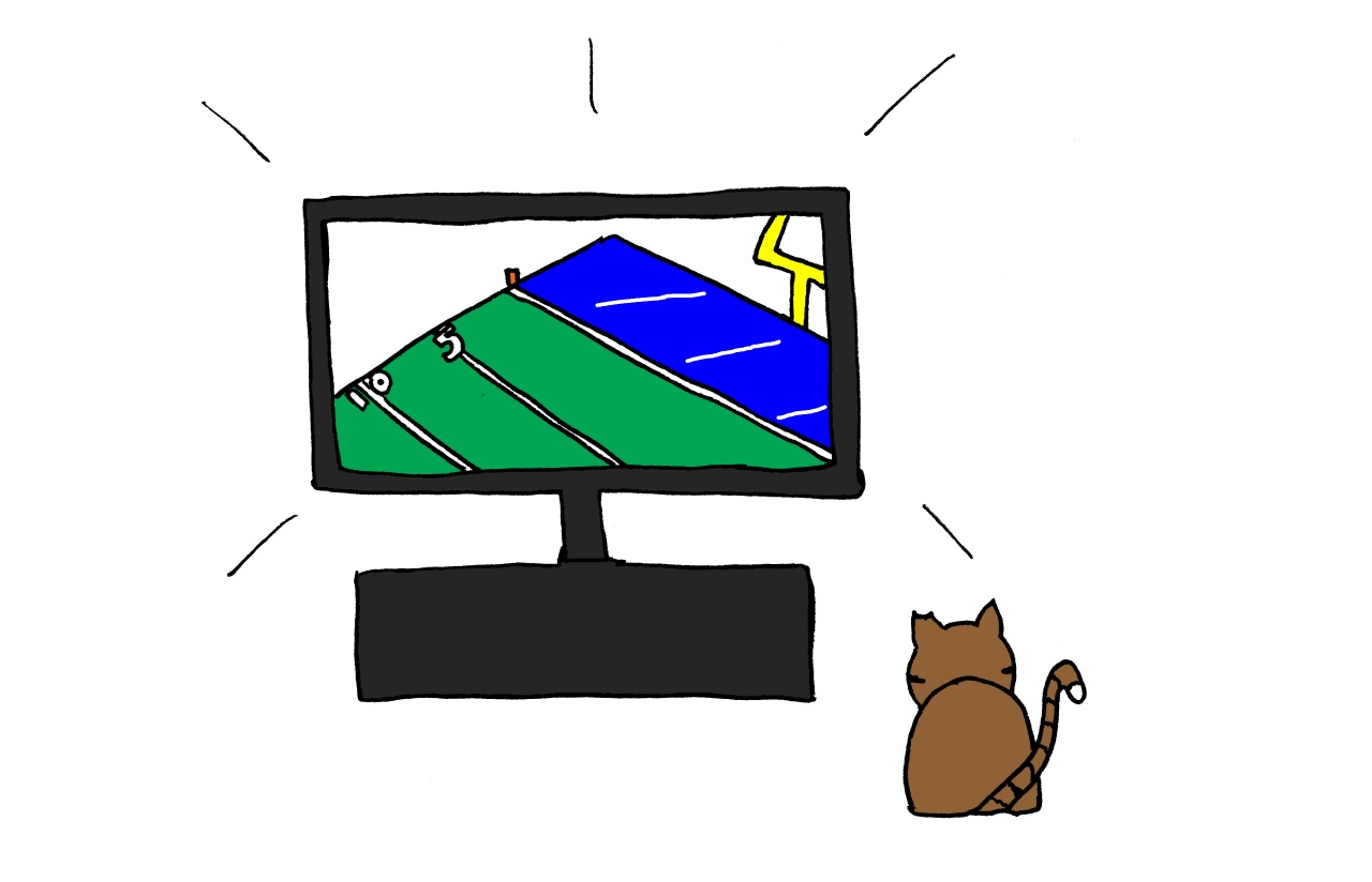 cat's guide to the super bowl